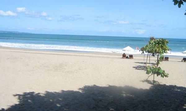 Bali Coconut 4