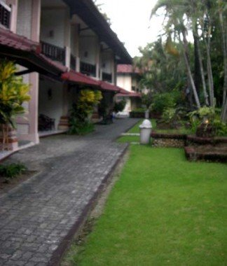 Bali Coconut 2