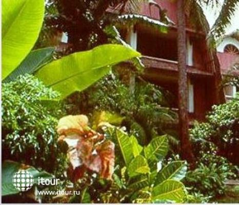 Raddin Bali 4