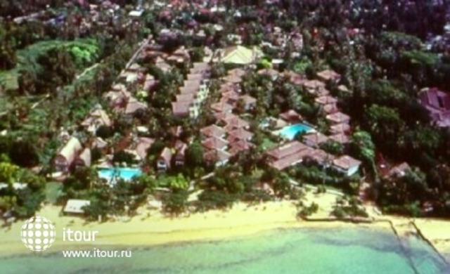 Raddin Bali 1