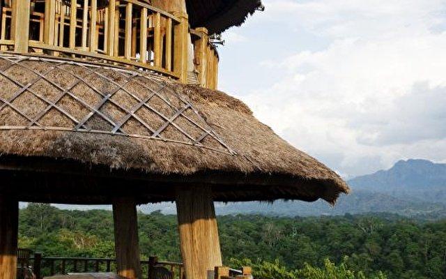Mimpi Resort Menjangan 7