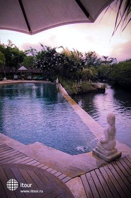 Mimpi Resort Menjangan 10