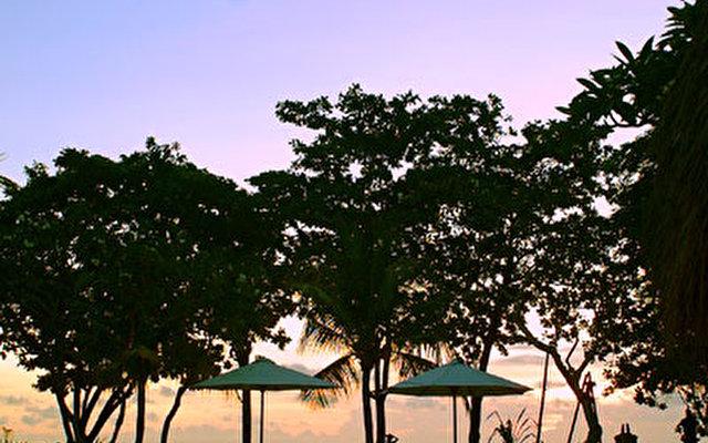 The Sandi Phala 6