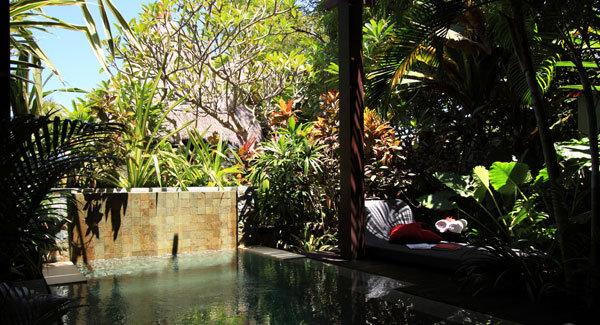The Sandi Phala 9