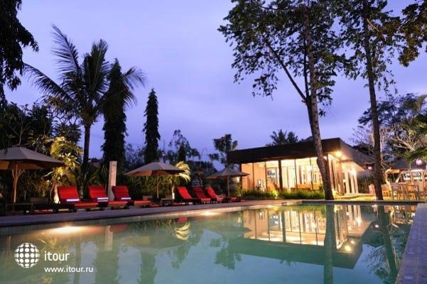 Y Resort 1