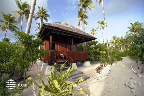 Wakatobi Dive Resort 7