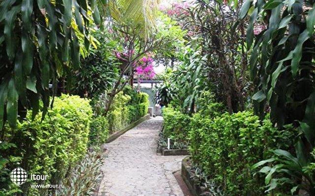 Paradise Palm Beach Bungalows 1