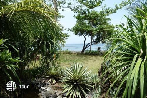 Jukung Bali Bungalow 6
