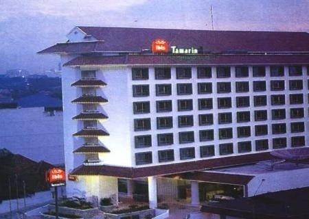 Ibis Tamarin 2
