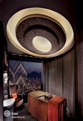The Ritz-carlton, Hong Kong 9