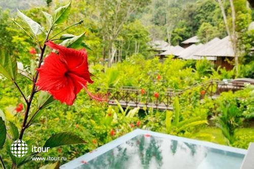 Bunga Raya Island Resort 4