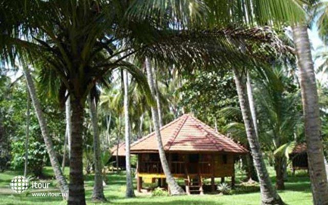 Palm Paradise Cabanas 4
