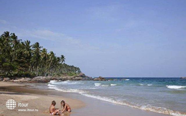Palm Paradise Cabanas 3
