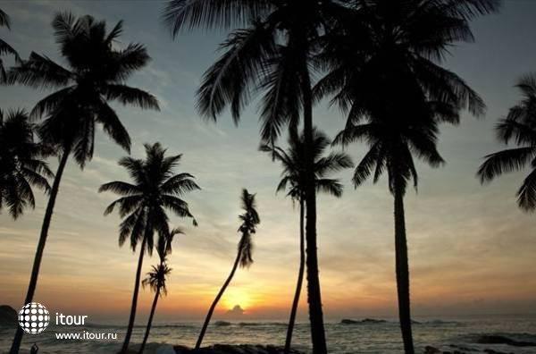Palm Paradise Cabanas 2