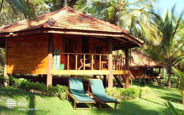 Palm Paradise Cabanas 1