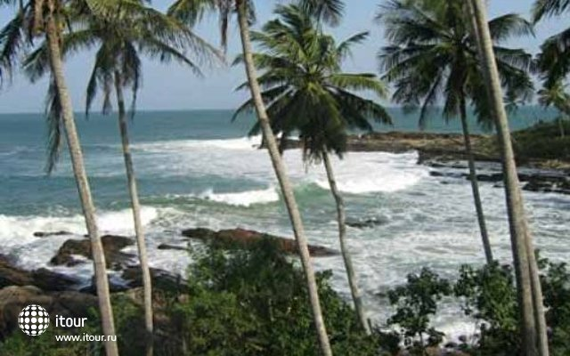 Palm Paradise Cabanas 9