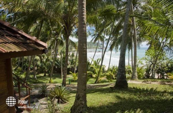 Palm Paradise Cabanas 10