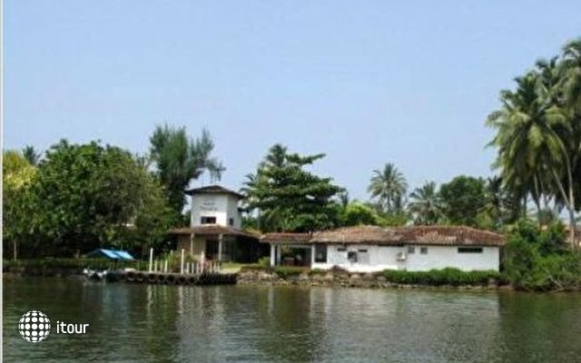 Paradise Island 8