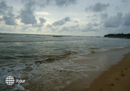 Paradise Island 9