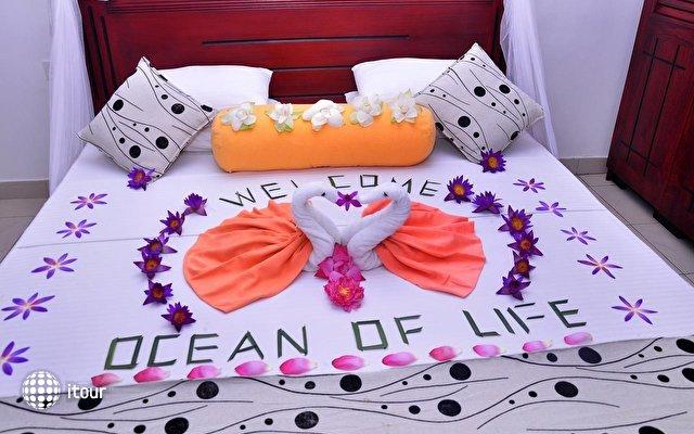 Ocean Of Life Ayurvedic Resort 4
