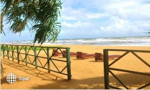 Green Shadows Beach 4
