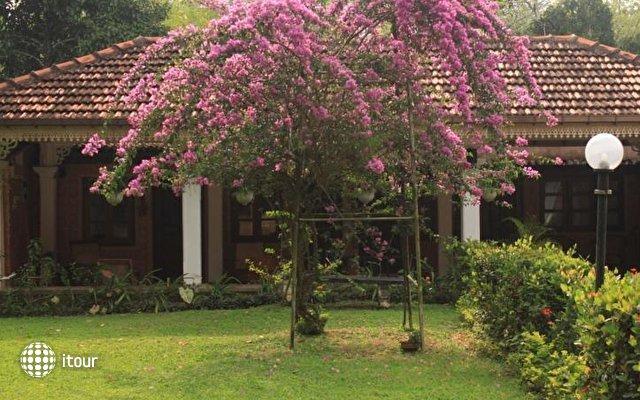 Plantation Villa 7