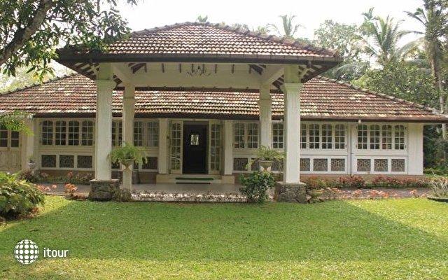 Plantation Villa 1