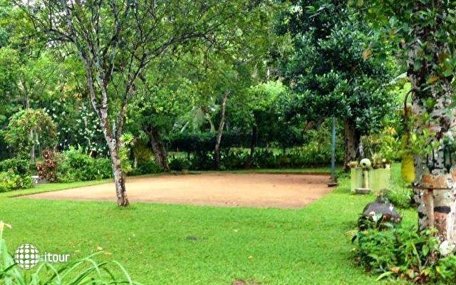 Plantation Villa 10
