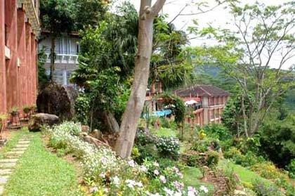 Amaya Hills (ex. Le Kandyan) 25