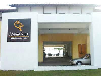 Amaya Reef 9