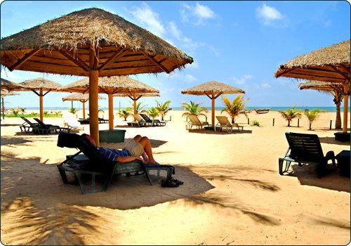 Goldi Sands 8