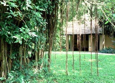 Sigiriya Village 8