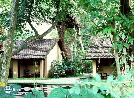 Hotel Sigiriya 5