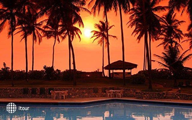 Palm Village 4