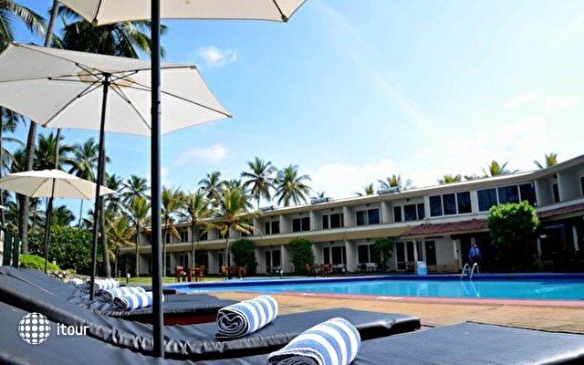 Palm Village 8