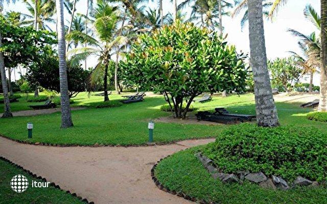 Palm Village 10