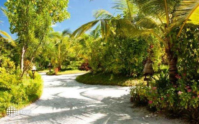 Naladhu Maldives 6