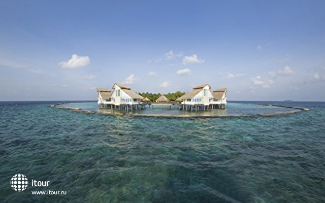 Ellaidhoo Maldives By Cinnamon (ex. Chaaya Reef Ellaidhoo) 6