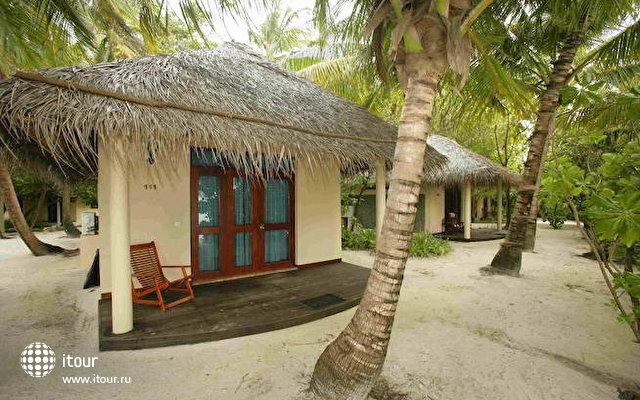 Ellaidhoo Maldives By Cinnamon (ex. Chaaya Reef Ellaidhoo) 7