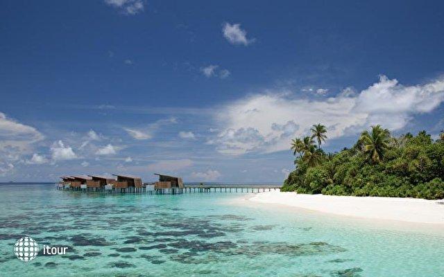 Park Hyatt Maldives Hadahaa (ex. Alila Villas Hadahaa) 3
