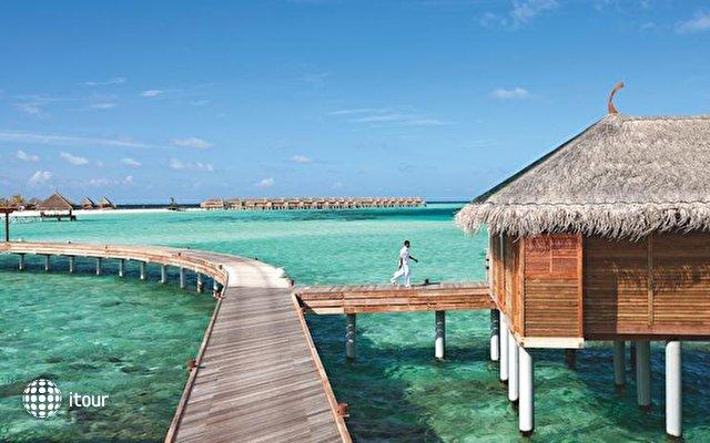Constance Moofushi Resort 4