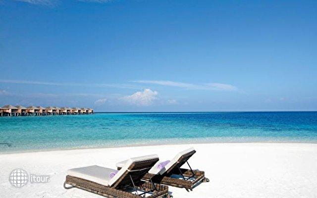 Constance Moofushi Resort 5