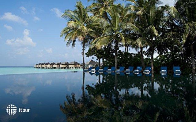 The Sun Siyam Iru Fushi (ex. Hilton Iru Fushi Resort & Spa) 7