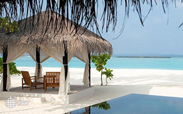 The Sun Siyam Iru Fushi (ex. Hilton Iru Fushi Resort & Spa) 4