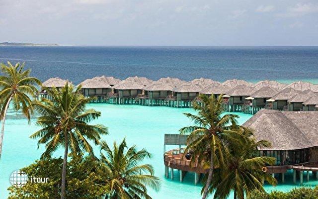 The Sun Siyam Iru Fushi (ex. Hilton Iru Fushi Resort & Spa) 5