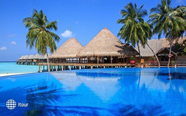 Sun Aqua Vilu Reef Maldives (ex. Vilu Reef Beach And Spa Resort) 4