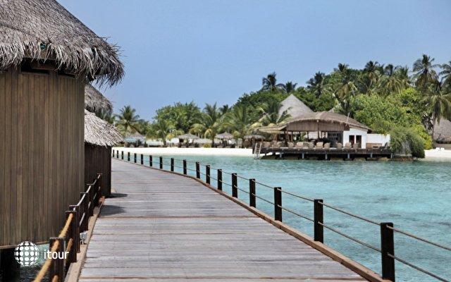 Nika Island Resort 8