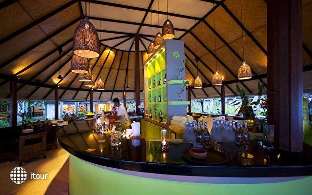 Angsana Ihuru Resort & Spa 9