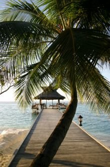 Banyan Tree Maldives Vabbinfaru 9