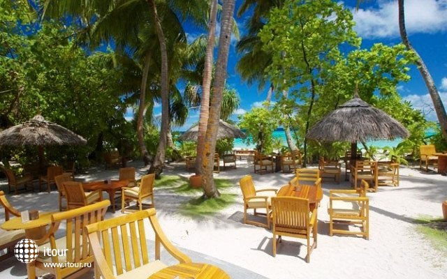Filitheyo Island Resort 7
